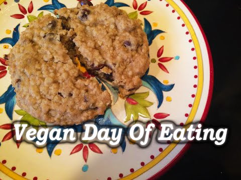 Vegan Day Of Eating || Career & Goals