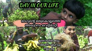 DAY IN OUR LIFE|ഭാഗ്യന്റെ ഒരു വർഷത്തെ അദ്ധ്വാനംവെട്ടിയെടുത്തു|വല്ലൂർനാടിന്റെ ശരിക്കും ഭംഗി|best vlog