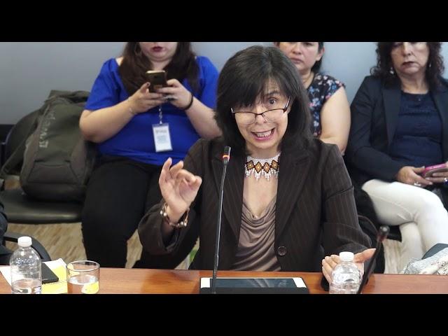 Defensoría del Pueblo ante la Comisión de Justicia sobre la despenalización del aborto