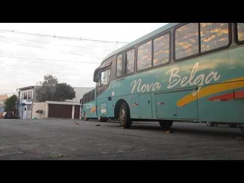Grandino Transportes e Nova Belga Transportadora