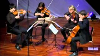 Beethoven String Quartet Op.18 No.4-I. Allegro ma non tanto - Xiang Yu with Vertavo Quartet