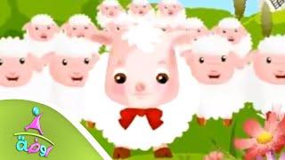 أنشودة خروف العيد | من قناة روضة للأطفال