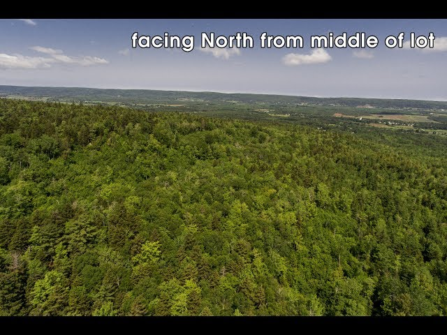 52.45 Acre Lot on Highway 201, Paradise, Nova Scotia