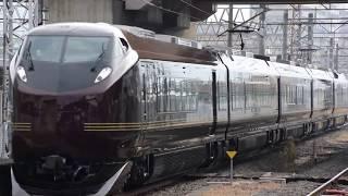 E655系 SENDAI光のページェント 団体臨時列車 運転