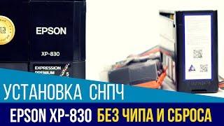 Установка СНПЧ на бесчиповый Epson Expression Premium XP-830