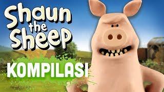Shaun the Sheep - Season 4 Compilation (Episodes 21-25)