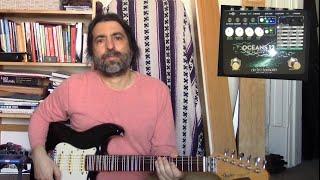 Electro-Harmonix Oceans 12 - Basic 12 Reverb Types Demo