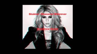 Shakira - Whenever Wherever (Dj.Andrew Remix)
