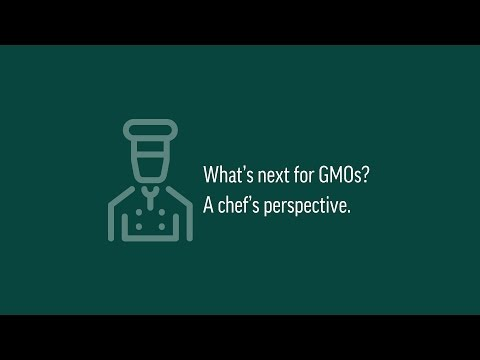 Food Challenge: Feeding a Growing Population, Combating Pests & Diseases