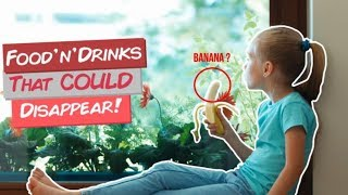 10 Food and Drinks That COULD Disappear!