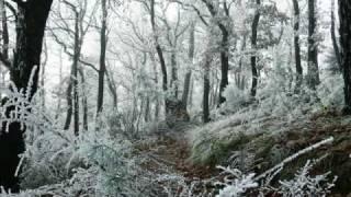 Polarius - Winter in Polarius 01 nemo airfield 02 FALLIN SNOW 03 in...