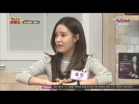 151114 My Pet Clinic T-ARA Eunjung & Hyomin