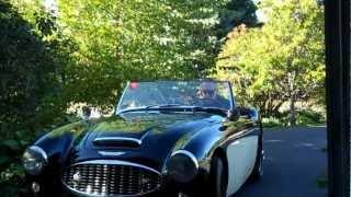 1960 Austin Healey 3000 BN7 - SOLD