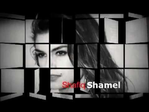 Shafiq Shamel: In the spirit of Ahmad Zahir - ای که از کلک هنر نقش