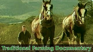 Traditional Farming Documentary -- Farm life in Ireland during the 1930s - \