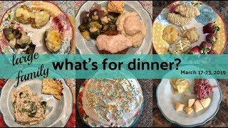 What's for Dinner? & dessert! March 17-23, 2019   Large Family Meals   Unused Vlog Footage! thumbnail