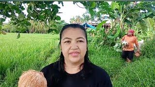 ANOTHER UNEXPECTED BLESSINGS FROM TEXAS | NAGLUTO KAMI NG LAING /Buhay probinsya vlog#60
