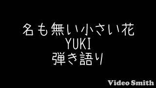 名も無い小さい花/YUKI 弾き語り