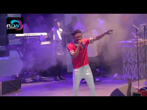 mayorkun & mr real best performance ever at cool breeze party