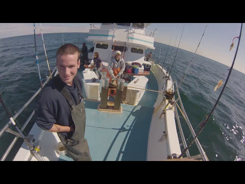 Eastmans Fishing Fleet 2013