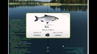Как начать ловить рыбу в игре ТРОФЕЙНАЯ РЫБАЛКА.