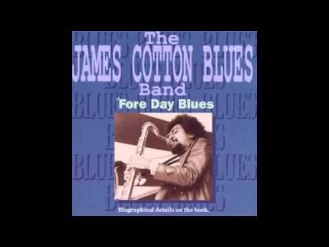 James Cotton - Off The Wall (Little Walter)