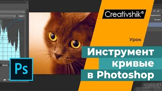 Adobe Photoshop. Инструмент кривые