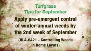 Horticulture Tips for September