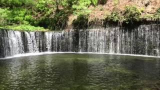 白糸の滝 thumbnail