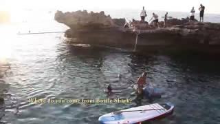 Video Beirut bottle shark goes to the rescue of Kfaraabida. download MP3, 3GP, MP4, WEBM, AVI, FLV Agustus 2017