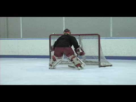 Philipp Allmaier Goaltender Skills 3-2010