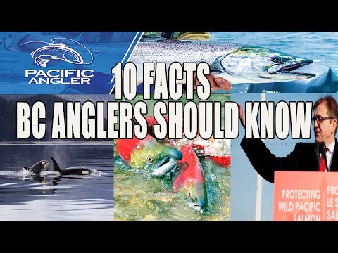 FACTS THAT ALL BC ANGLERS SHOULD KNOW - Pacific Angler Vancouver Fishing Report -