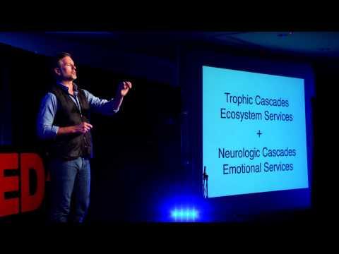 Neuroconservation -- your brain on nature: Wallace J. Nichols at TEDxSantaCruz
