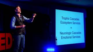 Neuroconservation -- your brain on nature: Wallace J. Nichols at TEDxSantaCruz