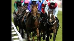 horse racing results today