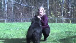 Lisa Kirk - Trustmark Critical Illness Customer