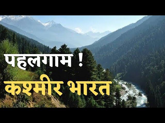 Betaab Valley Pahalgam । Kashmir India 🇮🇳