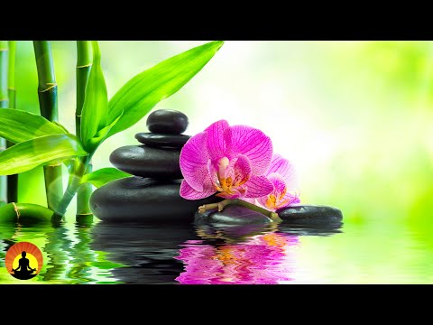 🔴 Relaxing Music 24/7, Stress Relief Music, Spa Music, Yoga Music, Sleep Music, Meditation Music