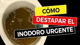 Cómo Destapar El Inodoro Urgente Youtube