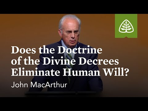 John MacArthur: Does the Doctrine of the Divine Decrees Eliminate Human Will?