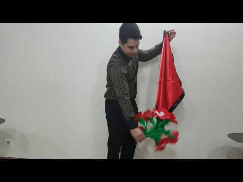 Tora Flower and Silk (3 Times) by Tora Magic Company
