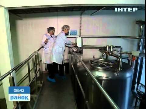 Профи: Технолог молочного производства