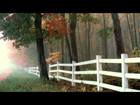 "(HD 720p) ""Adagio Cantabile - Sonata Pathétique"",  Beethoven"