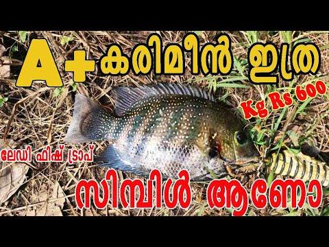 Fishing Fish Lady Angler/Creative Life Skills /fishing Kerala