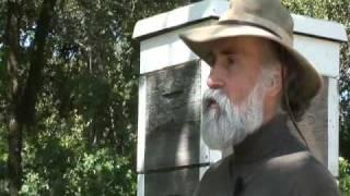Abeilles: du bétail à miel dans les enclos des colonies humaines03
