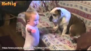 Собака лучший друг ребёнка