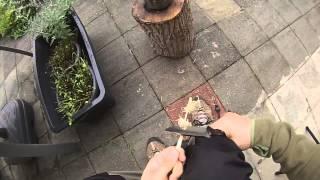 Quick and dirty : Feather stick und Firesteel bei nässe verwenden