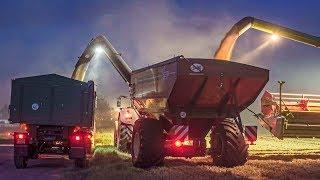 Claas Lexion 770 TT Combine Harvester and J&M Grain Cart | Wheat Harvest 2019