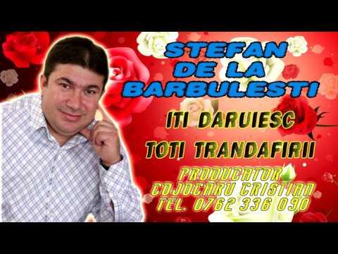 Stefan De La Barbulesti - Iti daruiesc toti trandafirii si jur in numele iubirii