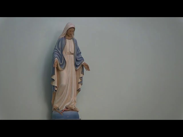 2021 January 9 - 4:30pm Vigil Mass